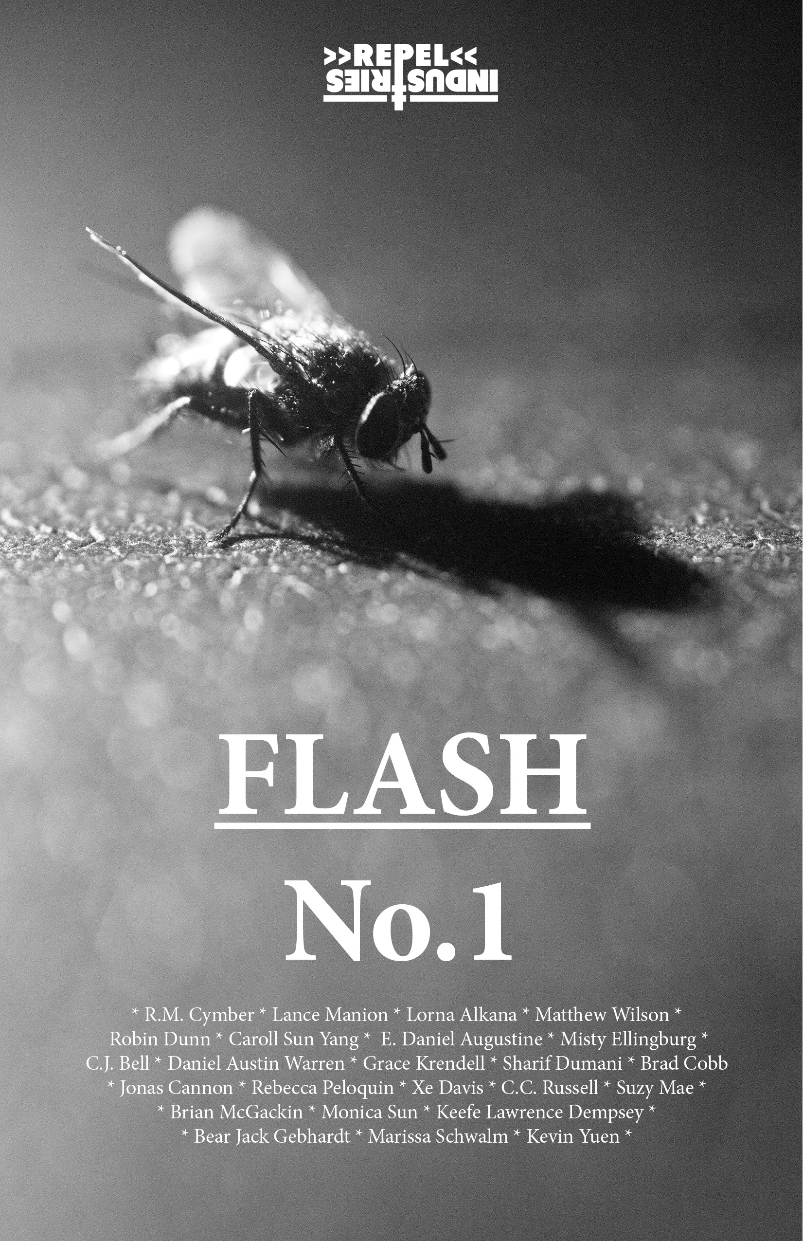FlashZine1